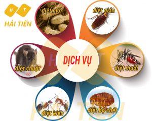 Dịch vụ diệt côn trùng tại Hà Nội uy tín số 1