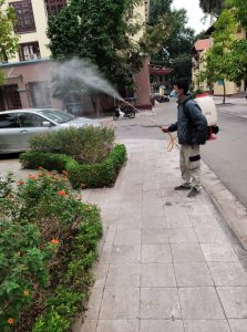 Phun muỗi quận Cầu giấy
