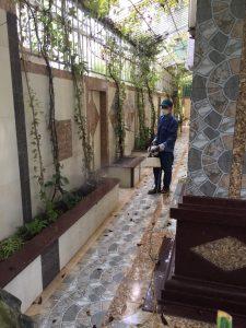 Phun muỗi quận Thanh Xuân